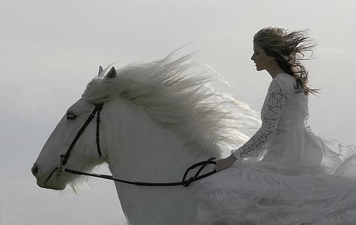 عاشقة تمتطي حصان الحرية